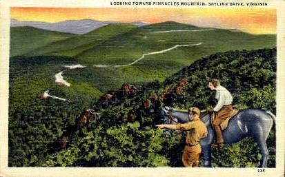 Pinnacle Mountain - Skyline Drive, Virginia VA Postcard