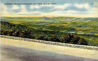 Newmarket gap - Skyline Drive, Virginia VA Postcard