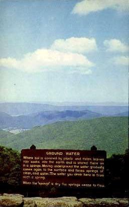 Ground Water  - Skyline Drive, Virginia VA Postcard