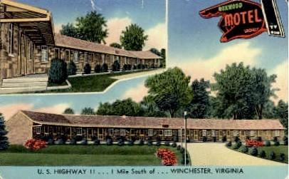 Boxwood Motel - Winchester, Virginia VA Postcard