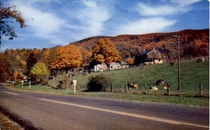 Warm Springs Inn - Virginia VA Postcard