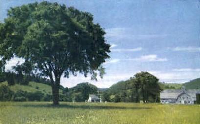 Vermont Farm - Pomfret Postcard