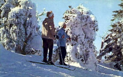 Skiing - New England Mountains, Vermont VT Postcard