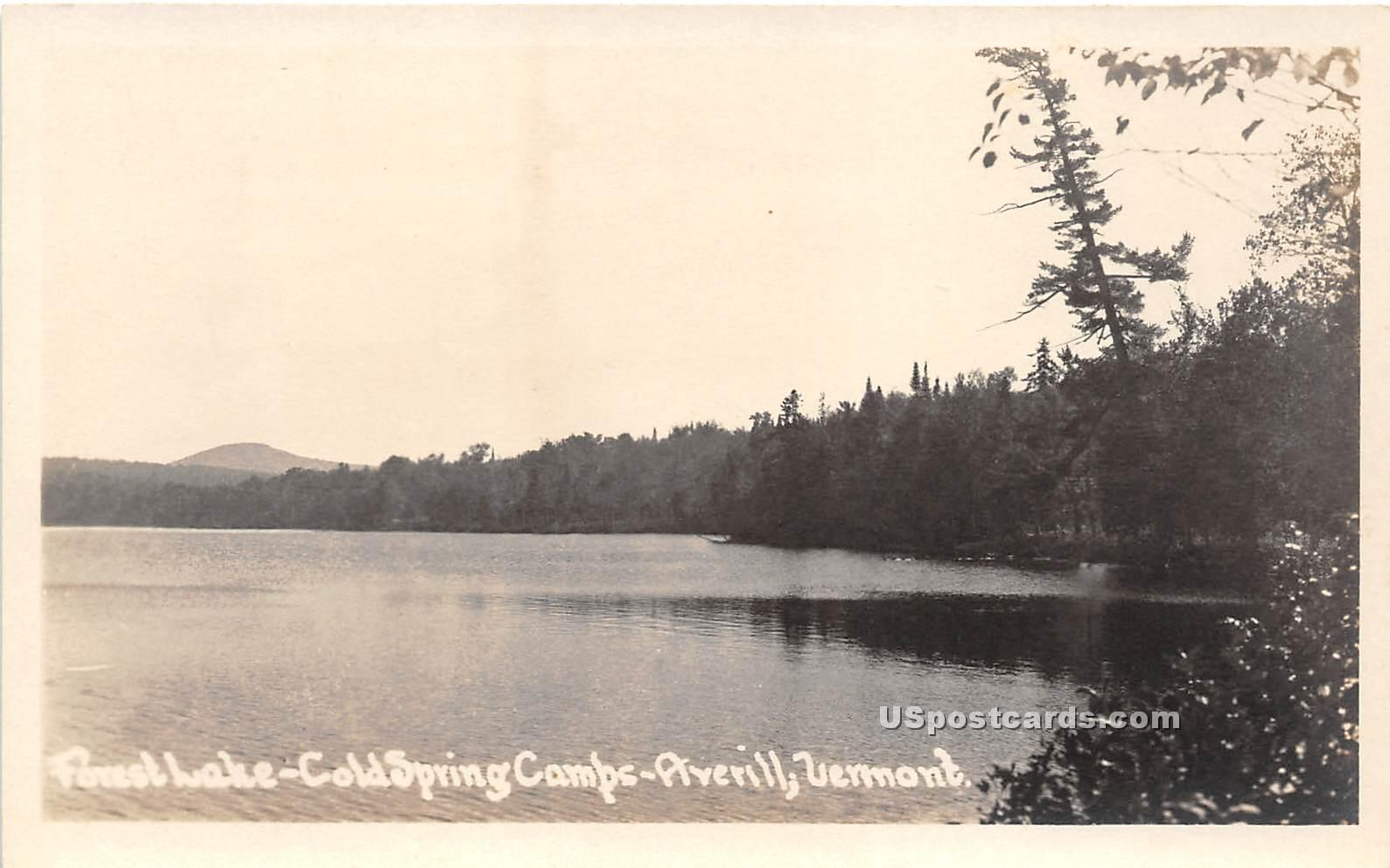 Cold Spring Camps - Averill, Vermont VT Postcard