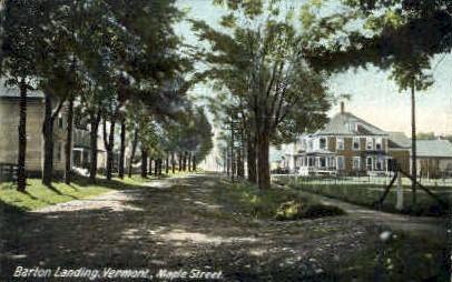 Maple Street - Barton, Vermont VT Postcard