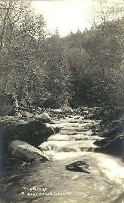 Real Photo The Gorge - Bread Loaf, Vermont VT Postcard