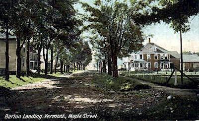 Maple Street - Barton Landing, Vermont VT Postcard