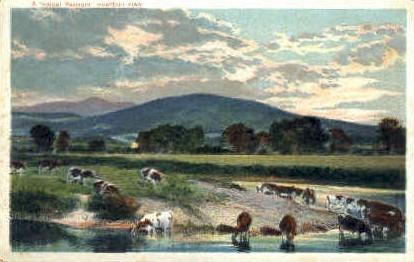 Misc, Vermont, VT Postcard