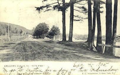 Four Pines - Bellows Falls, Vermont VT Postcard