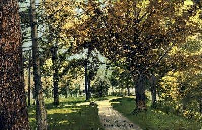 The Common - Brattleboro, Vermont VT Postcard
