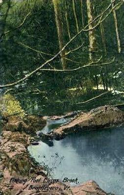 Ehgas Brook - Brattleboro, Vermont VT Postcard