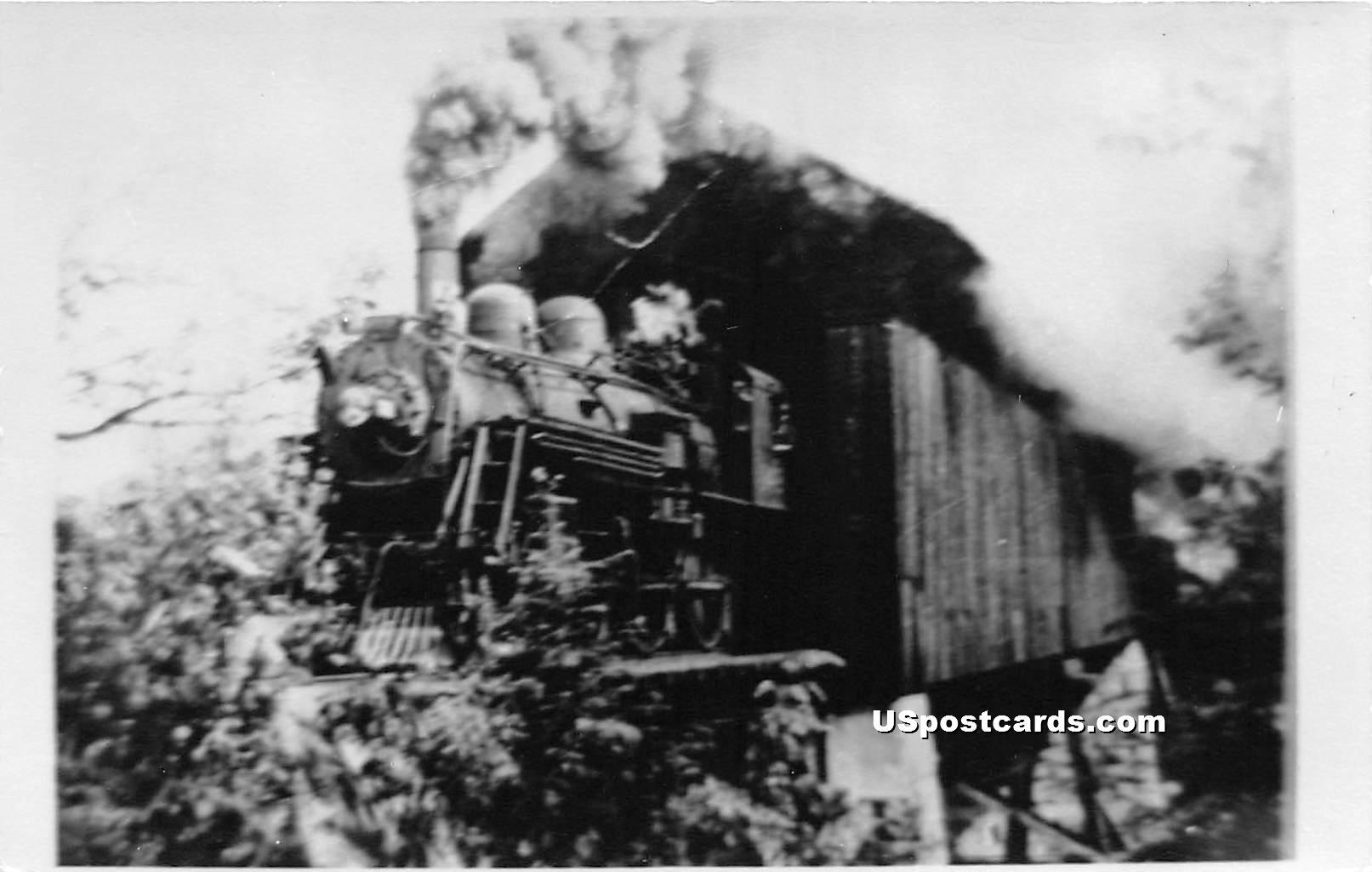 Train - Bennington, Vermont VT Postcard
