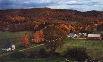 Village - Cornith, Vermont VT Postcard