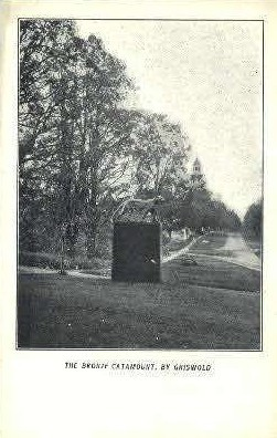 Bronze Catamount - Griswold, Vermont VT Postcard