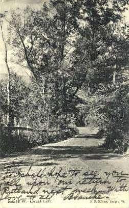 Lovers Lane - Dorset, Vermont VT Postcard