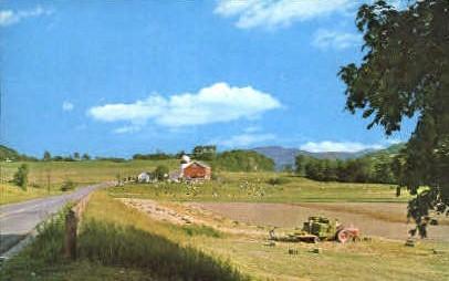 Vermont Farm - Dorset Postcard