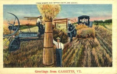 Crops - Gassetts, Vermont VT Postcard