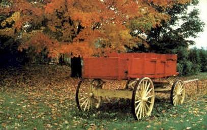 Autumn - Misc, Vermont VT Postcard