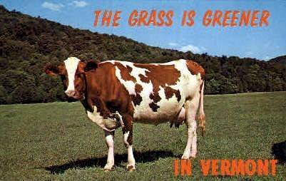 The Grass is Greener - Misc, Vermont VT Postcard