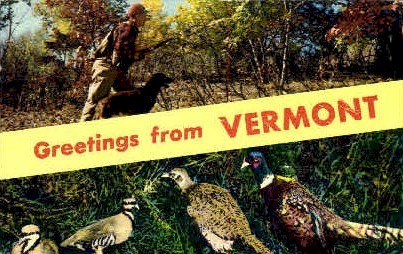 Greetings - Misc, Vermont VT Postcard