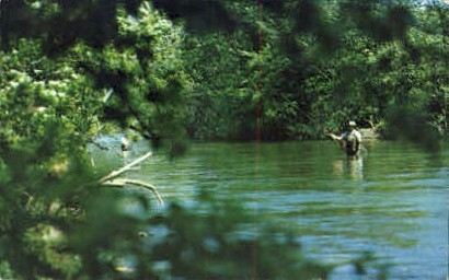 Battenkill River - Arlington, Vermont VT Postcard