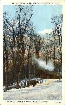 Sugar Orchard - Misc, Vermont VT Postcard