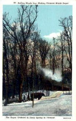 Boiling Maple Sap - Misc, Vermont VT Postcard
