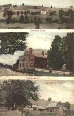 Reindeer Farm - Misc, Vermont VT Postcard