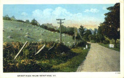Newfane  - Vermont VT Postcard