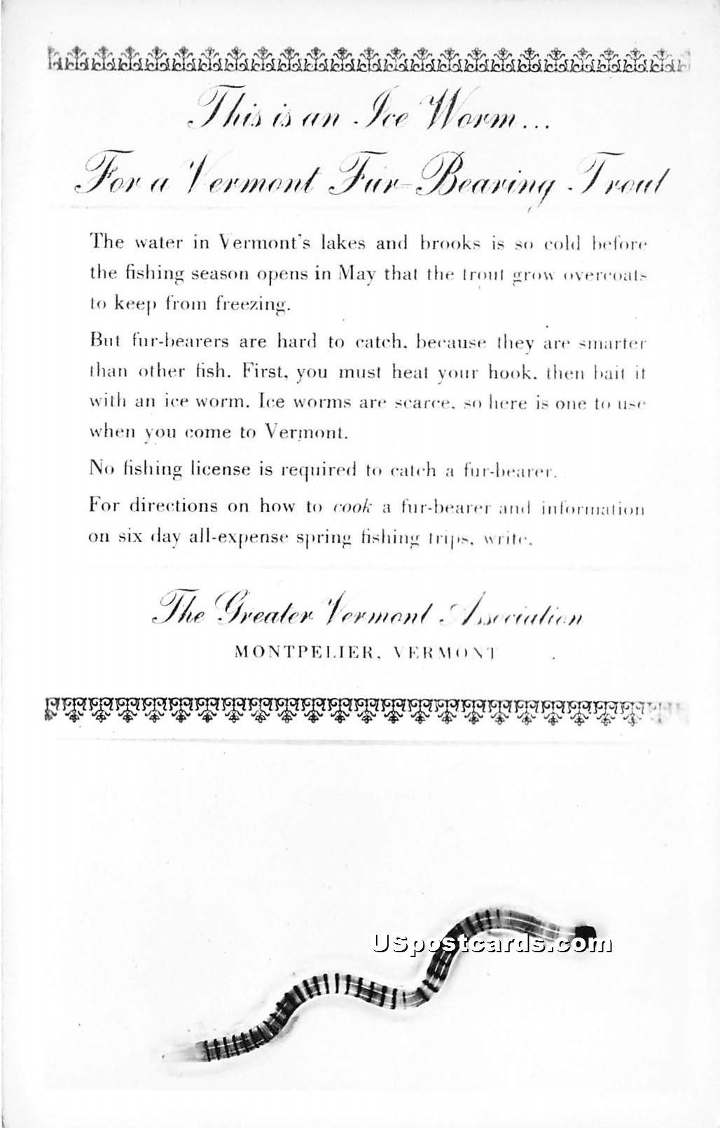 Ice Worm - Montpelier, Vermont VT Postcard
