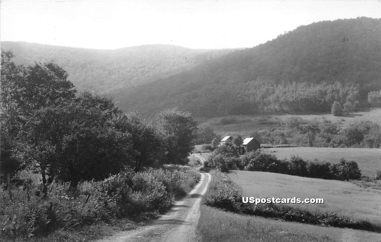 Drive - Mancheseter, Vermont VT Postcard