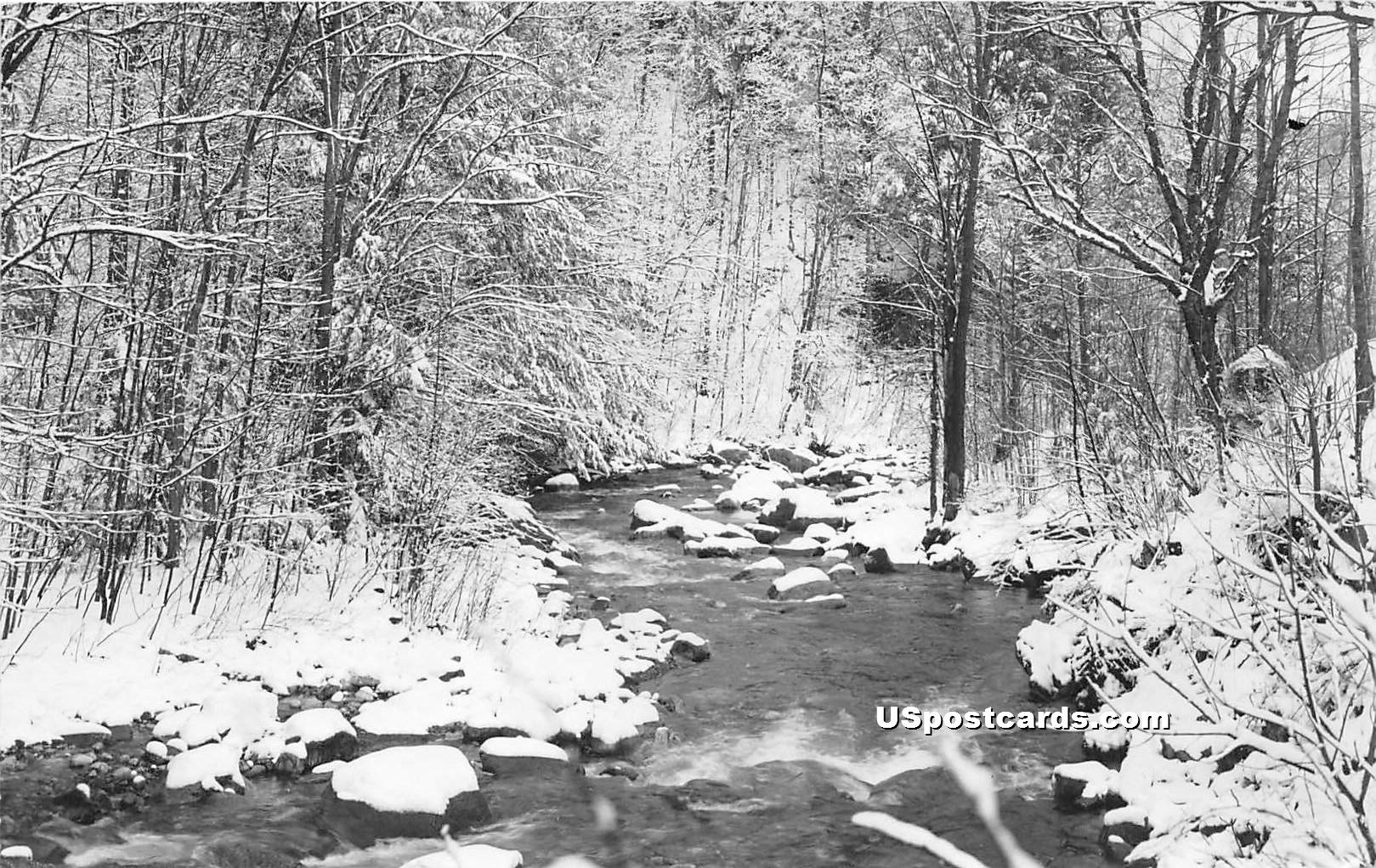 River - Mancheseter, Vermont VT Postcard