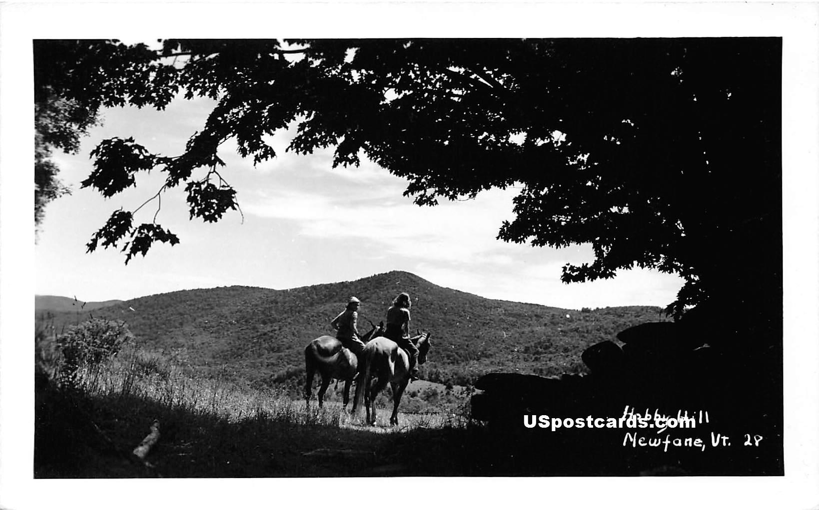 Hobby Hill - Newfane, Vermont VT Postcard