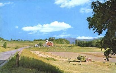 Vermont Farm - Poultney Postcard