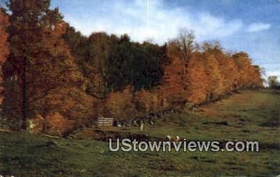 Vermont Sidehill Farm - North Central Vermont Postcards Postcard