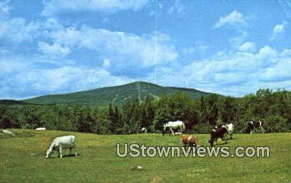 Big Bromley Mountain - Manchester, Vermont VT Postcard