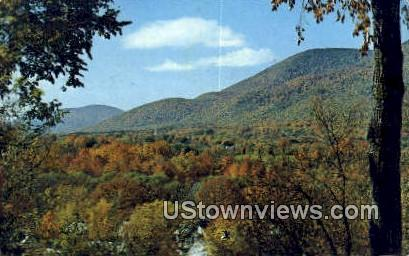 Manchester in the Mountains - Vermont VT Postcard