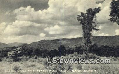 Gifford Woods State Forest Park - Rutland, Vermont VT Postcard