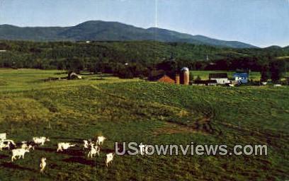 Mt Mansifeld - Stowe, Vermont VT Postcard