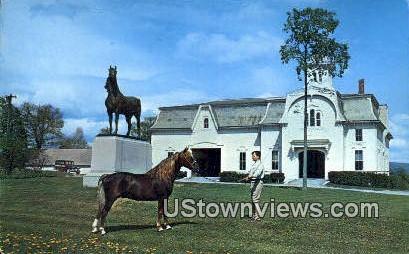 University of Vermont, Morgan Horse Farm - Weybridge Postcard