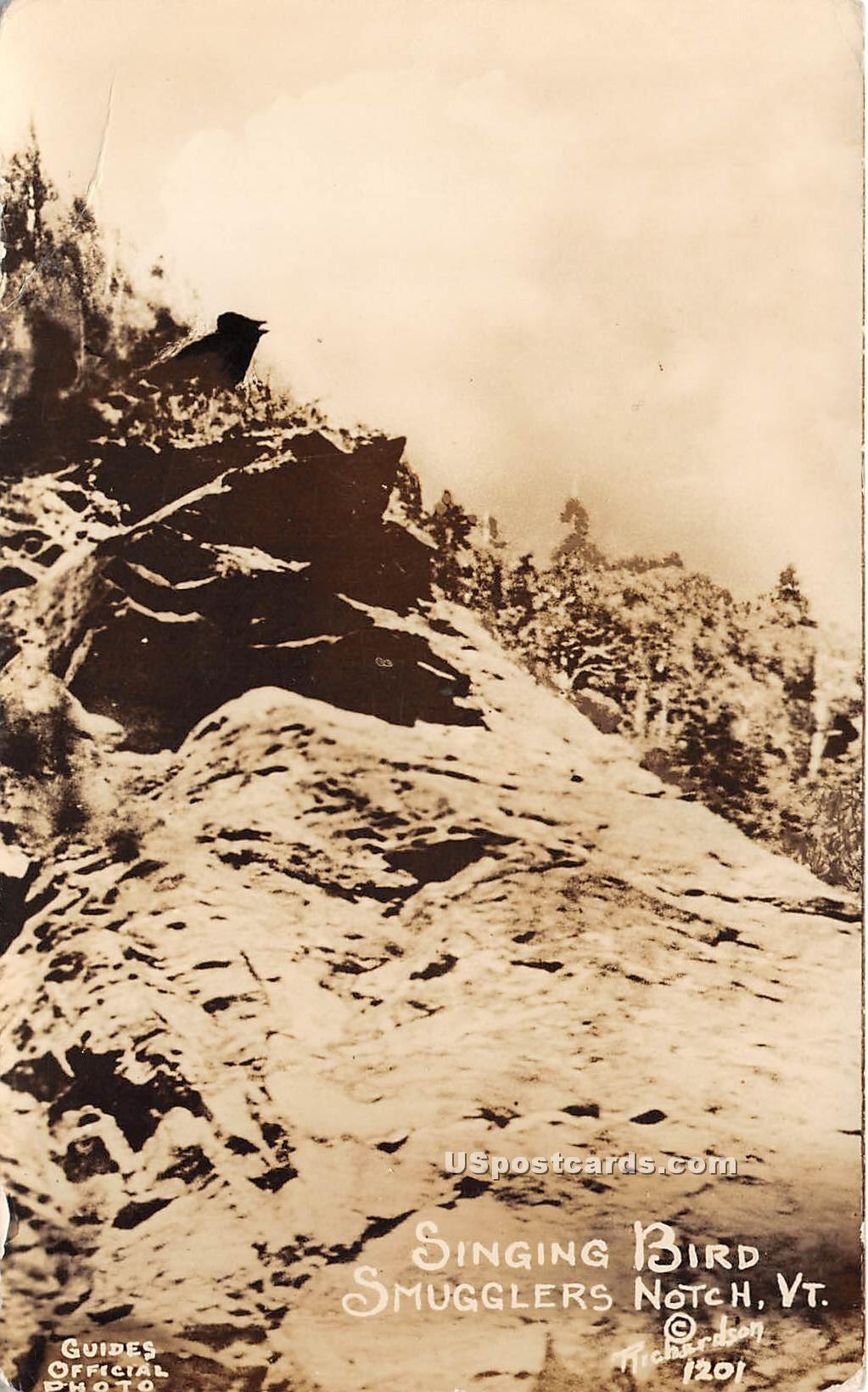 Singing Bird - Smugglers Notch, Vermont VT Postcard