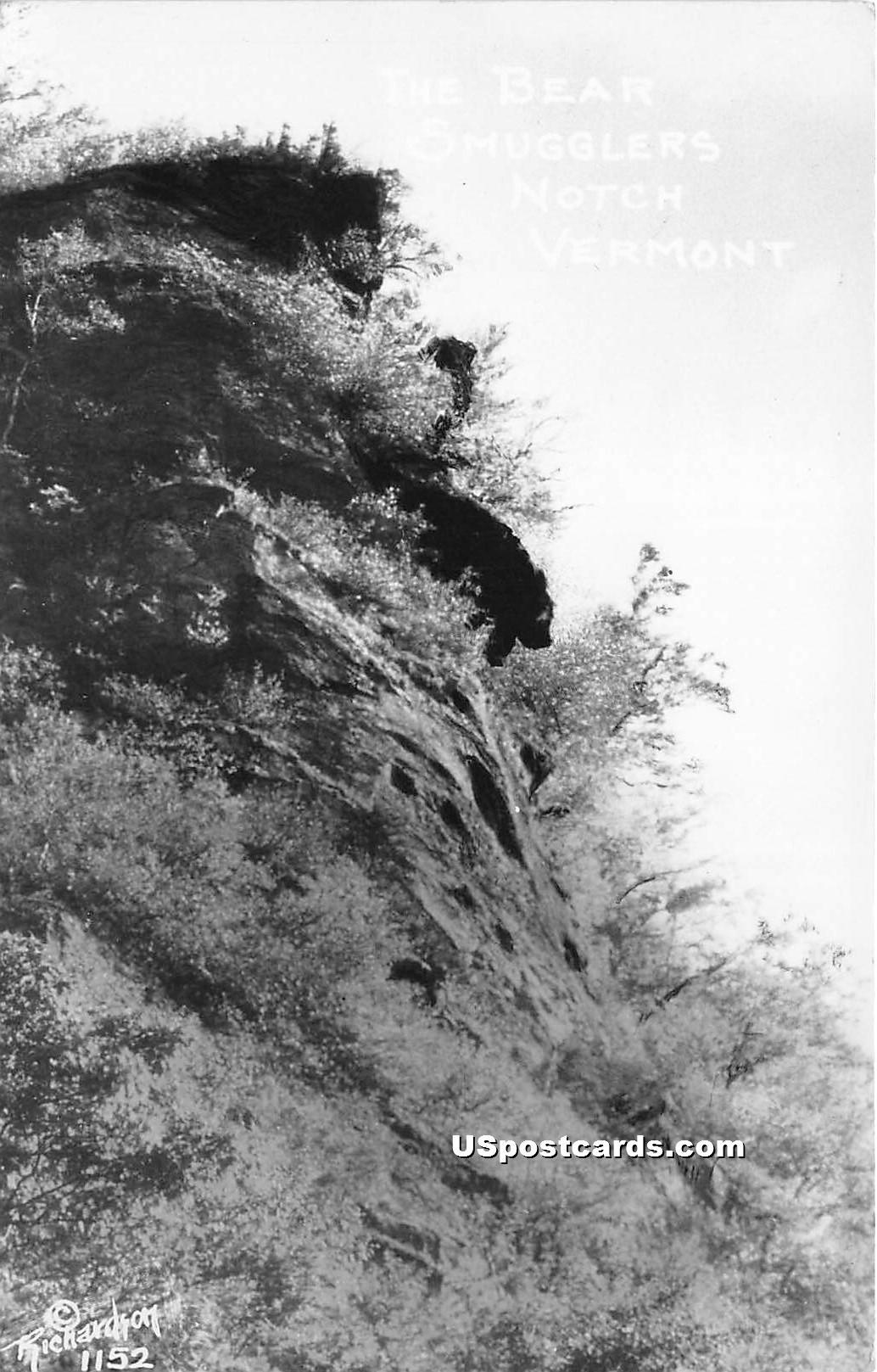 The Bear - Smugglers Notch, Vermont VT Postcard
