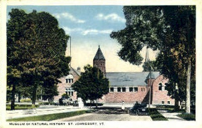 Museum of Natural History - St Johnsbury, Vermont VT Postcard