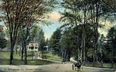 Western Avenue - St Johnsbury, Vermont VT Postcard