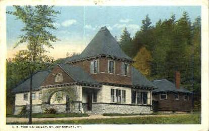 U. S. Fish Hatchery - St Johnsbury, Vermont VT Postcard
