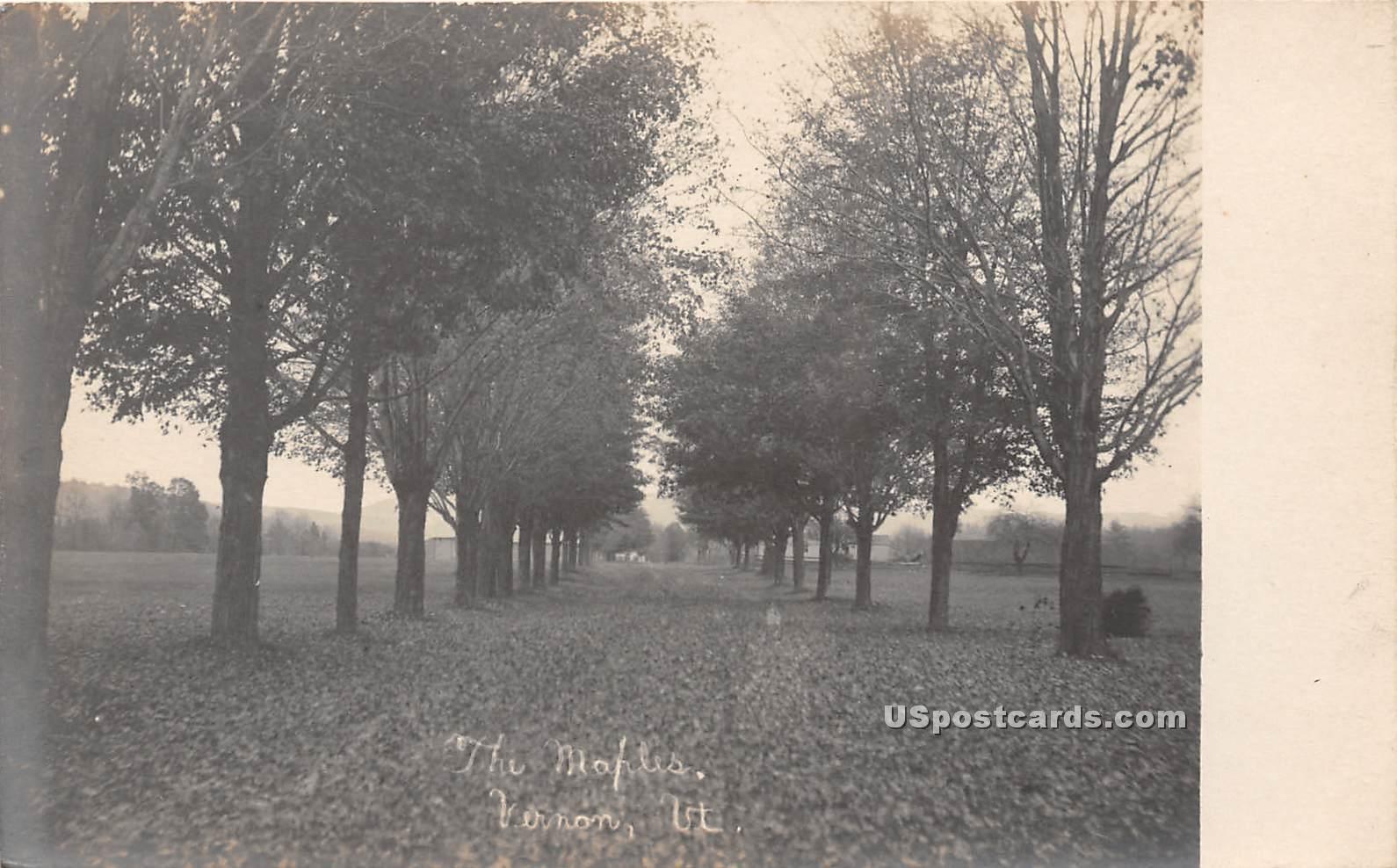 The Maples - Vernon, Vermont VT Postcard