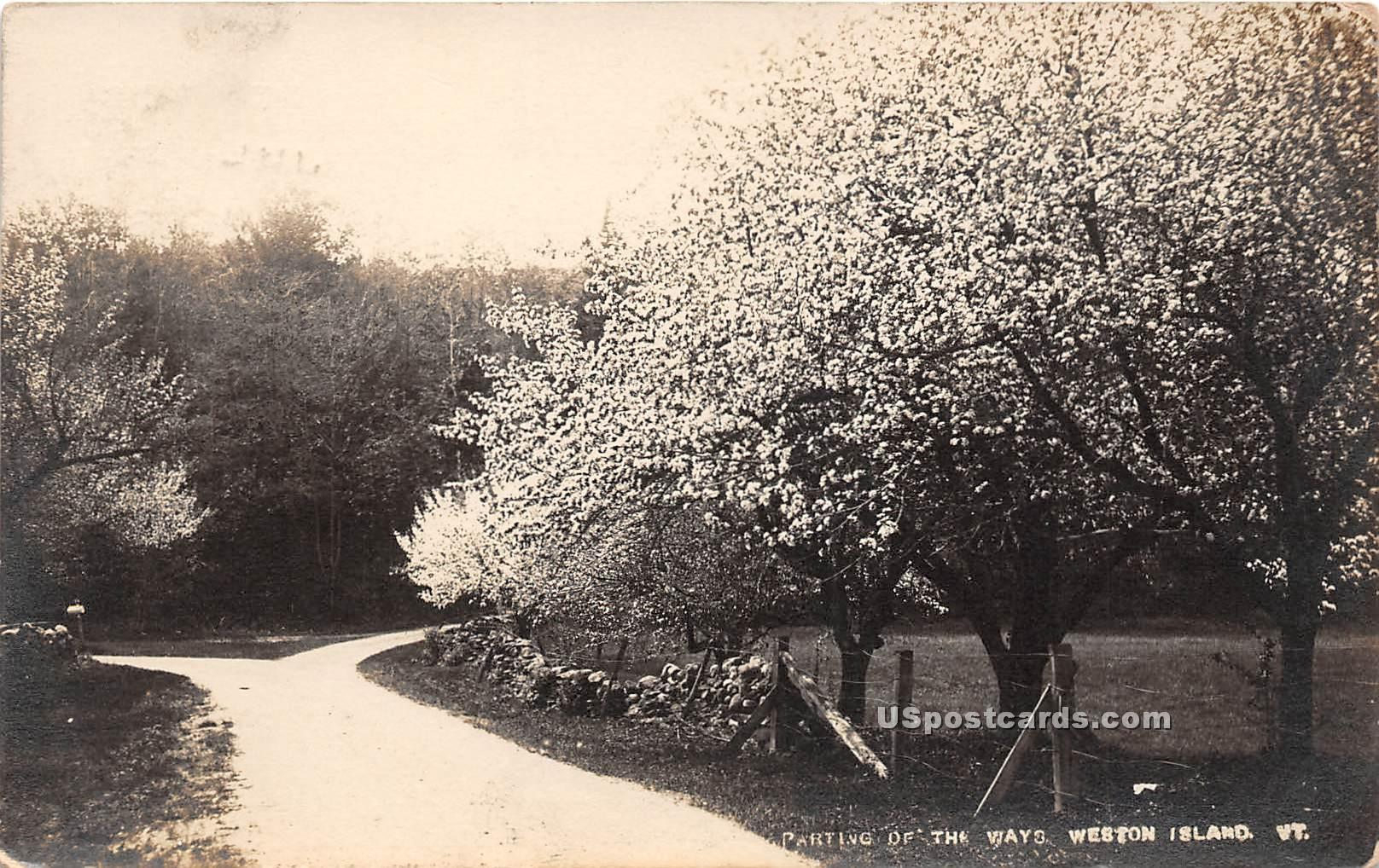 Parting of the Ways - Weston Island, Vermont VT Postcard