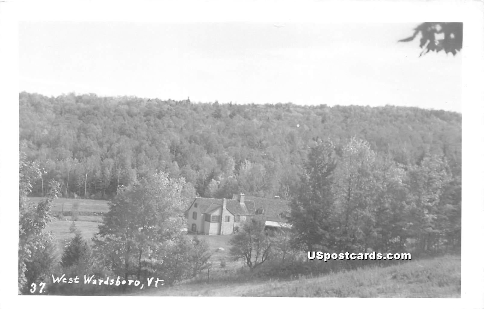 Birdseye View - West Wardsboro, Vermont VT Postcard