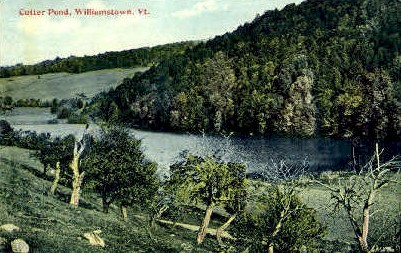Cutter Pond - Williamstown, Vermont VT Postcard
