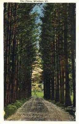 The Pines - Windsor, Vermont VT Postcard